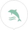 ic_delfin